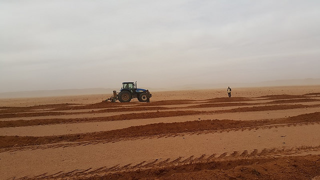 Fundamental shift in drought management needed in Near East and North Africa region