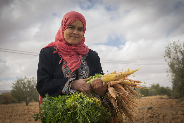 Women's informal groups and their impact on irrigated agriculture in Tunisia