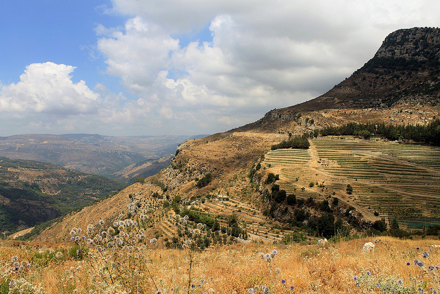 Improving the Early Warning System for Lebanese agriculture