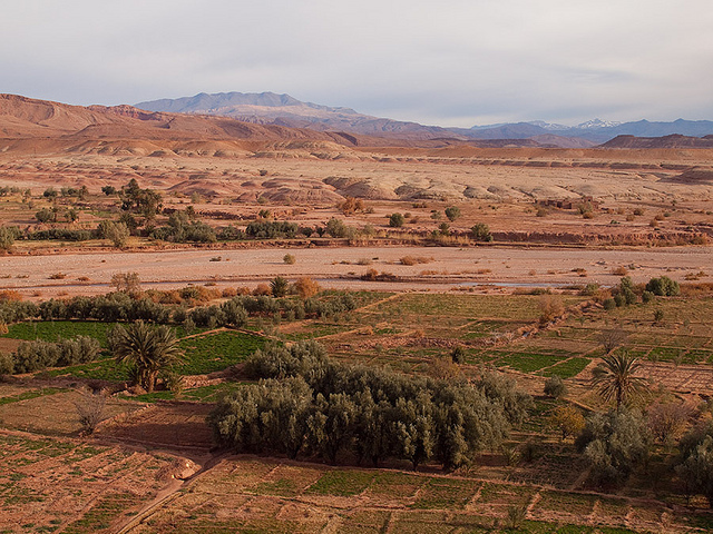 Climate Change, gender, Decision-Making Power, and Migration into the Saiss Region of Morocco
