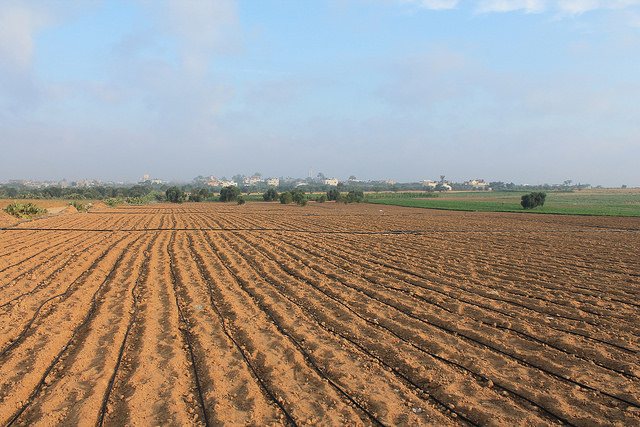 Water - Energy - Food Nexus in Palestine