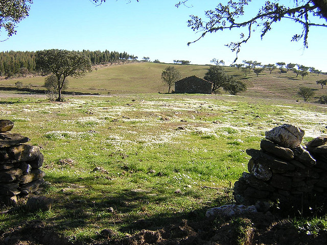 Arid land to a fertile Eden: permaculture lessons from Portugal