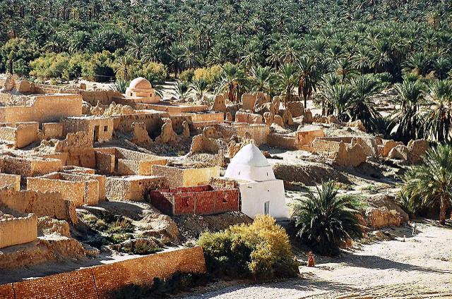 Rehabilitating oases in Tunisia