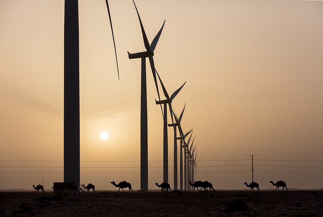 New horizons for renewable energies in Morocco and Africa