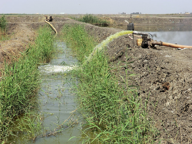 Reusing waste water: Egypt's fight against water scarcity
