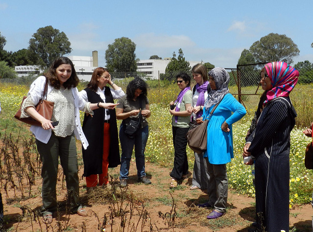 Empowering women scientists in MENA