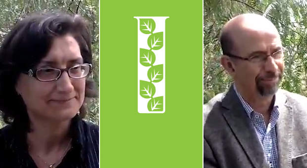 Improvement of research capacity in Tunisia: 2 interviews to key actors