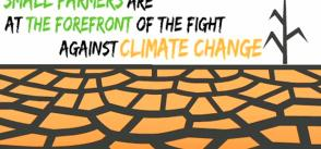 Climate change and food security: digital workshop