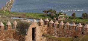 Gastronomic heritage in Mediterranean wetlands