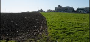 Jordan joins Mediterranean research effort to tackle water, food insecurity