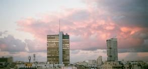 From Rooftop to Salad Bowl: Farming in Tel Aviv's Urban Jungle
