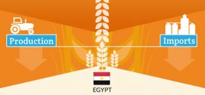 Cereal production and imports in the MENA region