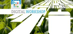 Civil Society's Perspective on Food Security  | Digital workshopCivil Society's Perspective on Food Security  | Digital workshop