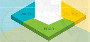 Water, Energy and Food Nexus in the Arab Region