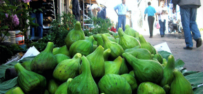 Algeria: valuing local products