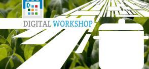 Civil Society's Perspective on Food Security    Digital workshop