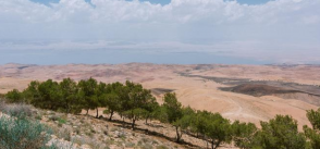 Holding back the desert in Jordan