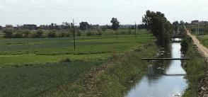 Solar powered water lifting for irrigation in the Nile Delta