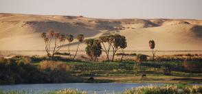 Addressing transboundary cooperation in the Eastern Nile through the Water-Energy-Food Nexus