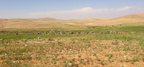 Jordan renewable energy: A new landmark in an ancient desert