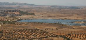 'If the land isn't worked, it decays': Tunisia's battle to keep the desert at bay