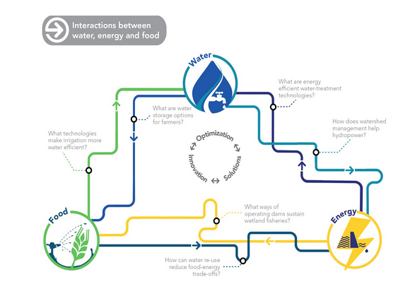 Interactions between water, energy and food